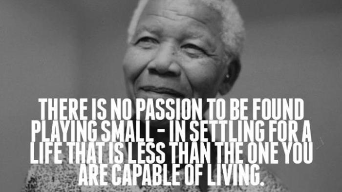nelson mandela quote no passion